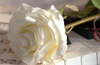 Beleef opnieuw uw huwelijksnacht